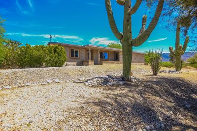 Tucson Single Family Home For Sale: 2310 N Tanque Verde Place