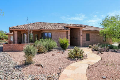 Pima County Single Family Home For Sale: 13852 E Placita Asta