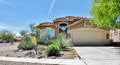 Pima County Single Family Home For Sale: 10892 S Arrowhead Spring Drive