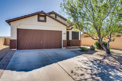 Pima County, Pinal County Single Family Home For Sale: 13975 S Camino Coso