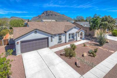 Pima County Single Family Home For Sale: 4984 W Calle Don Roberto