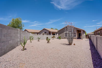 Pima County Single Family Home For Sale: 15094 S Theodore Roosevelt Way