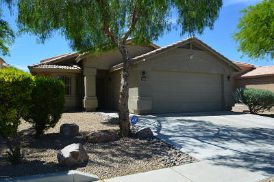 Pima County Single Family Home For Sale: 1305 N Wildcat Diers Road