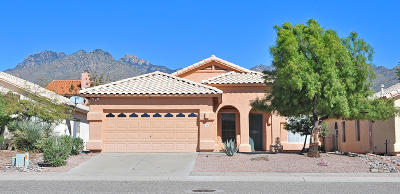 Pima County Single Family Home For Sale: 7799 E Windriver Drive