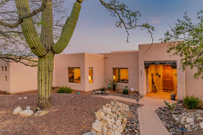 Tucson Single Family Home For Sale: 5351 N Sabino View Place