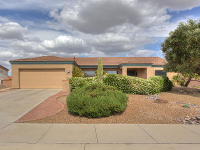 Pima County Single Family Home For Sale: 4869 S Desert Sunset Drive