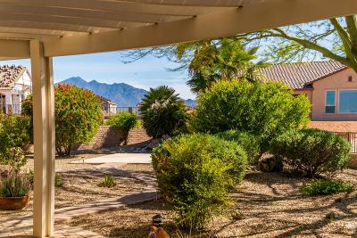 Pima County, Pinal County Single Family Home For Sale: 537 N Keyes Road