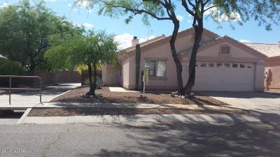 Tucson Single Family Home For Sale: 2855 N Mountain Creek Way