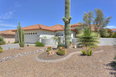 Green Valley AZ Single Family Home For Sale: $259,900