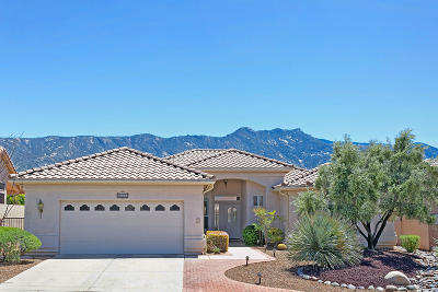 Tucson Single Family Home For Sale: 38235 S Rolling Hills Drive
