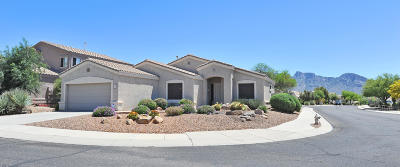 Pima County Single Family Home For Sale: 329 W Sacaton Canyon Drive