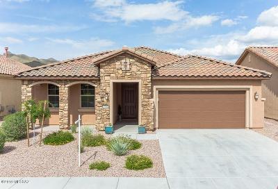 Marana Single Family Home For Sale: 6756 W Clear Creek Trail