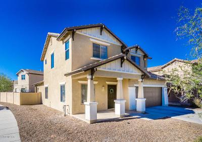 Sahuarita Single Family Home For Sale: 154 W Camino Espiga