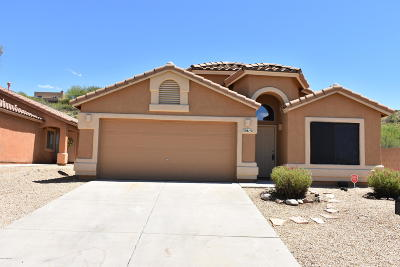 Tucson Single Family Home For Sale: 39815 S Old Arena Drive