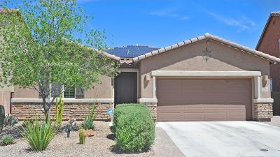 Tucson Single Family Home For Sale: 9539 S Quiet Dove Drive