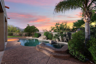 Oro Valley Single Family Home For Sale: 13665 N Placita Montanas De Oro