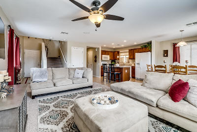 Sahuarita Single Family Home For Sale: 14330 S Camino Vallado