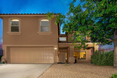 Tucson Single Family Home For Sale: 8855 N Twin Peaks Brook Road