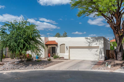 Tucson Single Family Home For Sale: 790 W Mallard Head Place