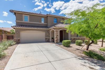 Tucson Single Family Home For Sale: 6527 W Wolf Valley Way