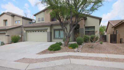 Tucson Single Family Home For Sale: 10537 E Avalon Park. Street
