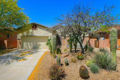 Tucson Single Family Home For Sale: 8495 N Shadow Wash Way