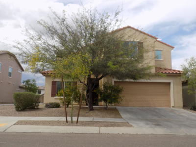 Tucson Single Family Home For Sale: 10991 E White Sage Drive