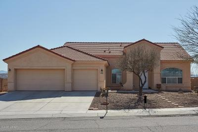 Rio Rico Single Family Home For Sale: 877 Manzanilla Way