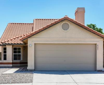 Tucson Single Family Home For Sale: 9508 E Stonehaven Way