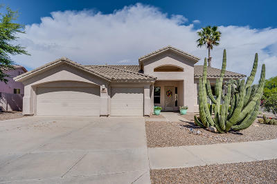 Tucson Single Family Home For Sale: 8845 N Silver Moon Way