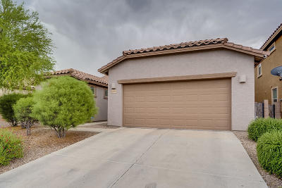 Tucson Single Family Home For Sale: 6455 W Swan Falls Way