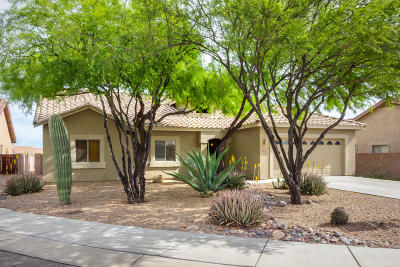 Tucson Single Family Home For Sale: 7776 W Thelon Court