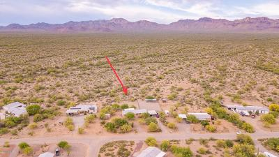 Pima County, Pinal County Manufactured Home For Sale: 8462 W Moses Drive
