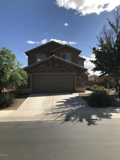 Pima County, Pinal County Single Family Home For Sale: 11905 W Heyburn Drive