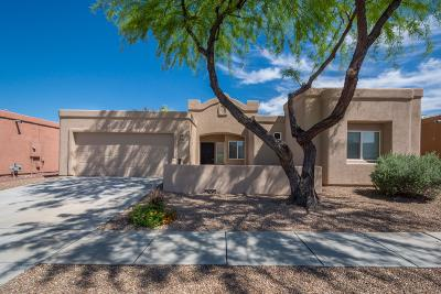 Pima County, Pinal County Single Family Home For Sale: 5440 W Cottonmouth Street