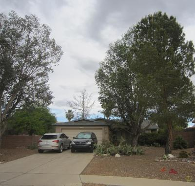 Pima County, Pinal County Single Family Home For Sale: 10250 E Circle Pines Drive