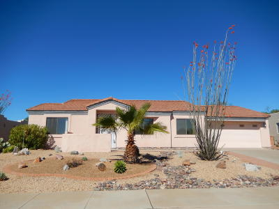 Pima County, Pinal County Single Family Home For Sale: 55 N Wellspring Drive