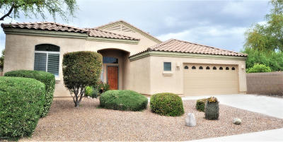 Pima County, Pinal County Single Family Home For Sale: 15069 N Pelham Road