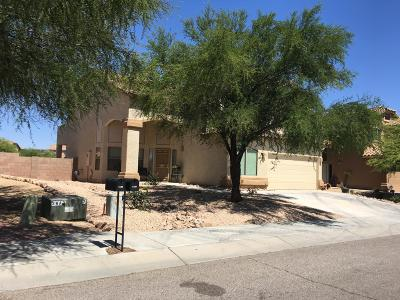 Tucson Single Family Home For Sale: 4139 S Amber Rock Avenue