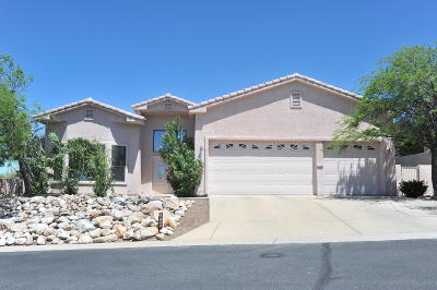 Pima County, Pinal County Single Family Home For Sale: 10190 N Alder Spring Drive