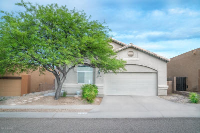 Pima County, Pinal County Single Family Home For Sale: 192 N Desert Park Place