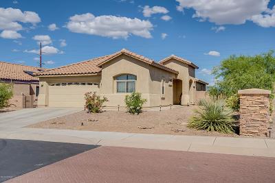 Marana Single Family Home For Sale: 12186 N Gadwall Drive