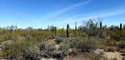 Tucson Residential Lots & Land For Sale: W Sinagua Road