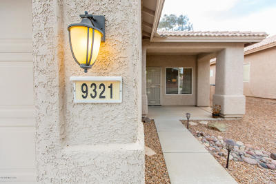 Tucson Single Family Home For Sale: 9321 N Painted Sky Drive