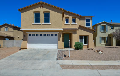 Pima County Single Family Home For Sale: 6911 S Martlet Drive