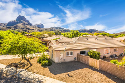 Pima County Single Family Home For Sale: 8189 N Iron Ridge Drive