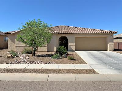 Pima County Single Family Home For Sale: 844 W Placita Pozanco