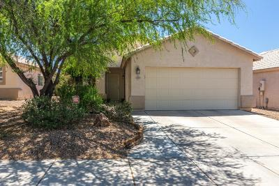 Pima County Single Family Home For Sale: 4499 W Holly Berry Way