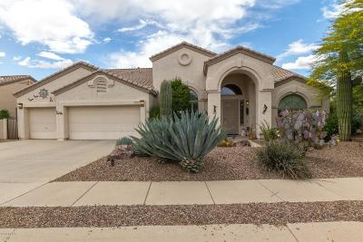 Oro Valley Single Family Home Active Contingent: 13187 N Woodburne Avenue