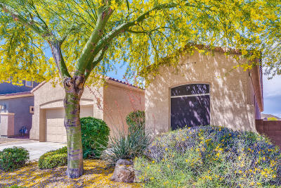 Tucson Single Family Home Active Contingent: 8487 N Shadow Wash Way